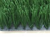 足球场草坪施工丨河北足球场草坪厂家丨河北人造草坪厂家
