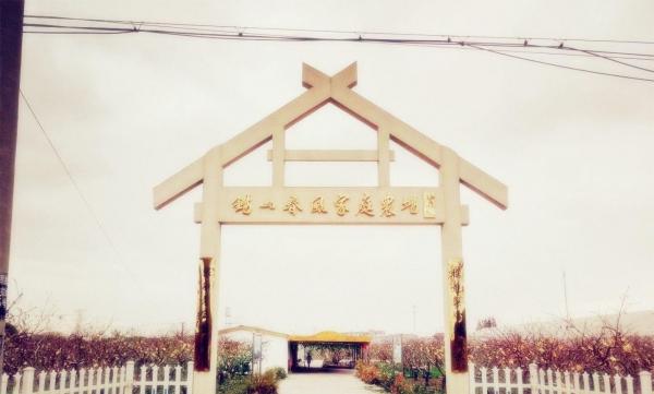 春风家庭农场提供红心火龙果采摘、农家菜、拓展、