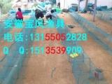 今年地笼网|地笼王生产厂家