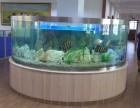 深圳专业承接公司家庭鱼缸护理,订做,上门专业清洗鱼缸水草缸