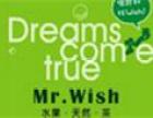 Mr.Wish水果饮料 诚邀加盟