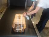 温州宠物空运 全国服务