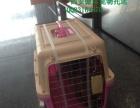西安至全国各地宠物托运,联运,预定有氧仓