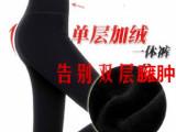 390克2013冬款女装时尚 显瘦保暖 全棉考拉绒9分踩脚打底裤