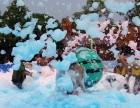 南宁周边活动暖场设备大型泡沫机,舞台作景活动雪花机泡泡机