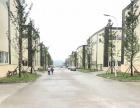 高速轻轨租售双福新区量身建造1000平米起独栋厂房