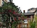 悦海世家177平米 一楼带大院子150平,地下室50平