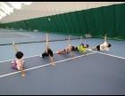 国家网球中心网球培训