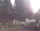 曾都区炎帝大道9公里碑 土地 19980平米
