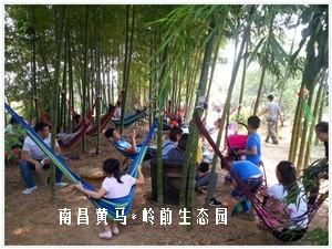 南昌岭前生态园带你欣赏不一样的神奇果树体验不一样的篝火露营