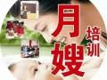 益阳月嫂公司选择欣鑫家政金山分公司