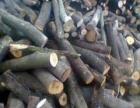 柴火杂木樟木