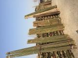 曹妃甸竹竿,园林绿化支撑杉木杆 竹竿 草绳等