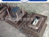 台州黄岩模具专业定制与加工塑料电池箱模具,蓄电池箱模具