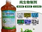 益富源芽苗生态宝用于芽苗菜生产出优质绿色食品