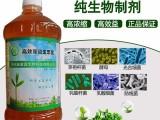 无土栽培花生芽苗菜水培花生营养液哪个牌子的效果好?