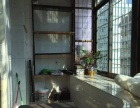 滨北 仙岳小学 新精装两房两厅 全套家具电器 拎包入住