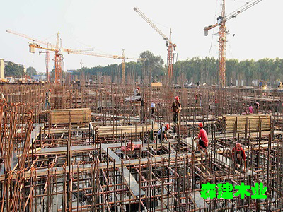 桥梁木方 工地木方家厂批发价格 价格优惠