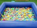 周末哪儿去 带孩子去 鱼佬大儿童乐园玩玩耍