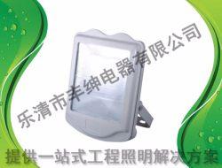 EBF602(L) 防爆平台灯