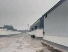环卫处,官园商贸区。 仓库 900平米