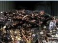回收金属废料、塑胶废料、电子废料、锡渣废料 电池等