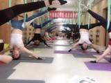 学习瑜伽教练培训需要多少钱