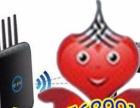 紫竹桥企业网站/个人网站/电子商务网站建设与设计