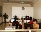 专业建站、网站维护、seo优化,百度推广