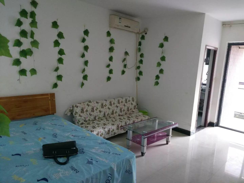 未来路 升龙凤凰城 1室 0厅 45平米 整租