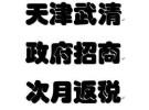 天津市武清区政府招商(返税)免费地址.0元办理执照.刻章免费