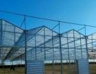 台安周边 50亩地10亩鱼塘8亩大棚外兑