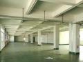 三栋数码园立交桥附近标准一楼厂房出租