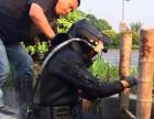 淮阴专业市政 工厂管道疏通,潜水打捞,CCTV检测等