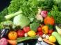 果蔬配送认准真食惠,批发配送果蔬
