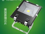 室外景观照明灯具 户外照明  LED投光/泛光灯C 10W20W