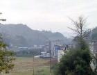 城西 土地 1000平米 (第一年免租)