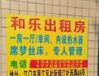 杜阮镇江杜西路龙安村新房招租
