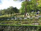 贵阳龙里龙凤园公墓,惠水龙王山墓地购买咨询中心