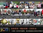 潍坊的高考美术成人美术儿童兴趣美术培训班