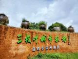 广州农家乐 广州番禺农家乐 广州三枝叶城市农场
