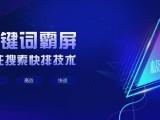 上海地区15年专业运营 网站建设及推广 私人订制营销策划