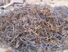 北京昌平天通苑附近收购废品回收
