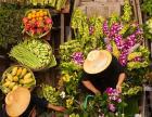 金泰府泰國餐廳加盟