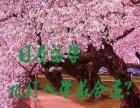 潍坊日本留学 免费日本留学申请从七翼开始