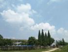 源仙台王华小学旁边 离机场非常近厂房 2000平米