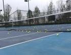 专业网球,职业教练速动网球训练营招生