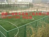 衡阳人造草皮价格, 衡阳足球场人造草铺装湖南一线体育设施工程