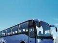班车,企事业单位旅游大巴中巴包车,机场接送带司机