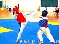 通州专业少儿跆拳道培训班专业青少年散打搏击培训班专业武术培训